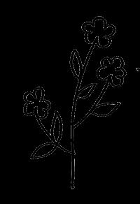 collection bretonne fleur - Breizh Angel